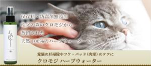 愛猫の耳掃除やフケ・パッド(肉球)のケアにクロモジ ハーブウォーター