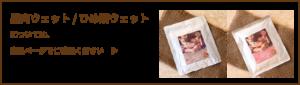 鹿肉ウェット/ひめ鯛ウェット